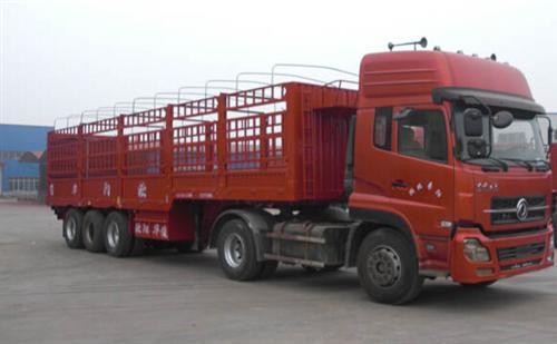 http://himg.china.cn/0/4_142_1045063_500_309.jpg