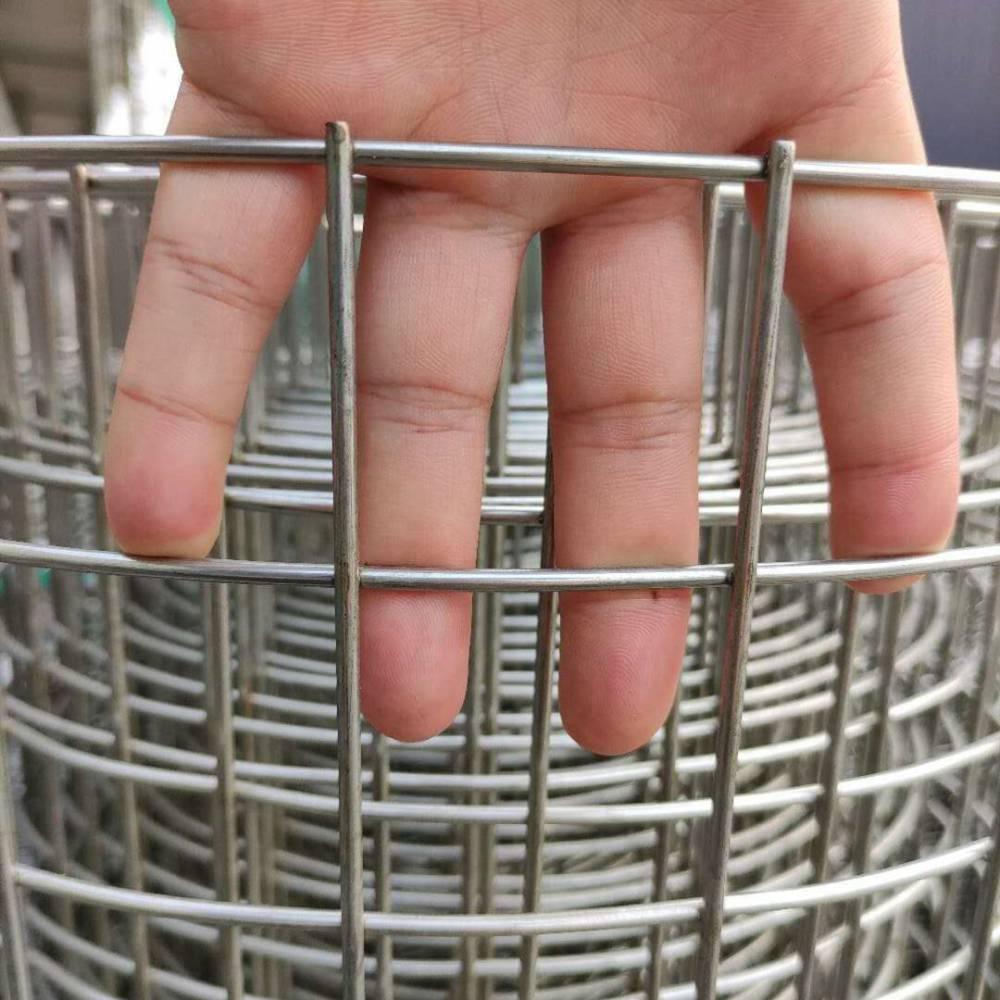 铁丝网河北墙体保温网粗丝熔接网出口标准电焊网