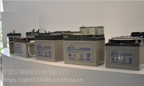 长春理士蓄电池DJM1265(12V65AH)国产一线品牌蓄电池