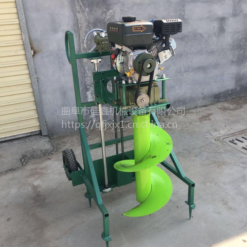 果园施肥打眼挖坑机 佳鑫新款汽油打洞机 多功能钻坑机