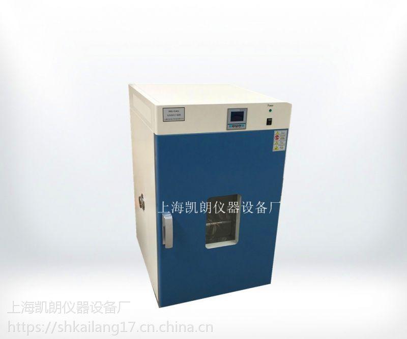 250℃电热恒温鼓风干燥箱 烘箱 上海DHG-9240A(立式)