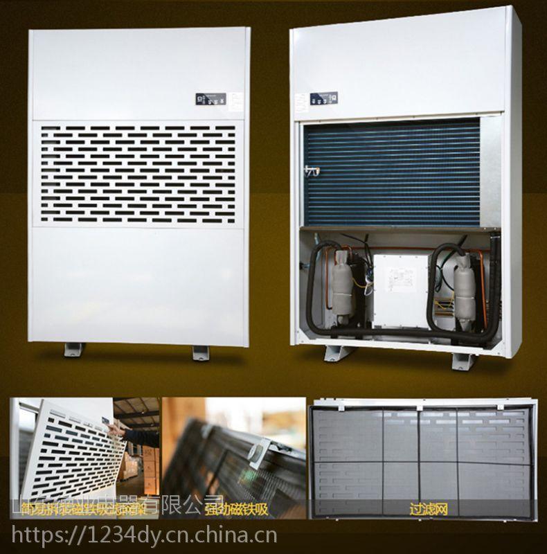 供应吉林长岭县超市地下车库用除湿机,品牌德业当天发货,现货