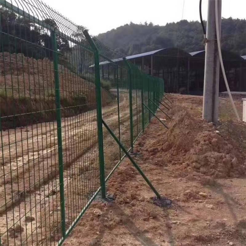 双边丝护栏 绿色圈地网 圈地铁丝网