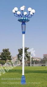 河北路灯杆 河北中华灯 灯柱 灯杆生产供应