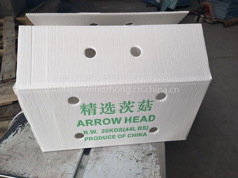 钙塑板塑料包材深圳市钙塑箱实力生产厂家