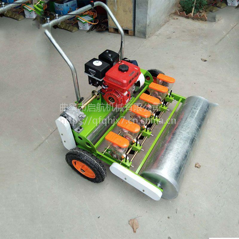 多功能免耕地谷子播种机 拖拉机带胡萝卜播种机 启航小颗粒种子穴播机规格