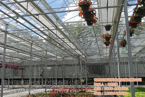 温室工程|智能温室工程建设新昌晟物产|花卉温室工程建设