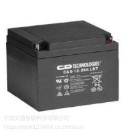 兴义蓄电池供应商12V65AH大力神铅酸蓄电池专营