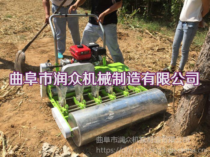 小粒种子菠菜播种机 汽油2行播种机 精播机厂家定制