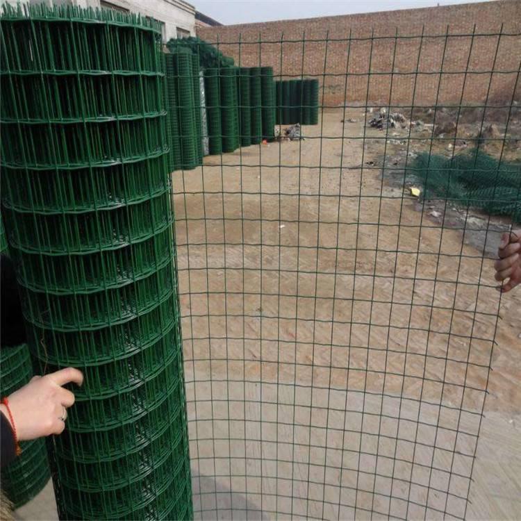 上海浸塑荷兰网 加挂铁丝网 圈玉米荷兰网供应商