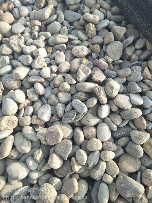 本诺厂家批发铺路用鹅卵石