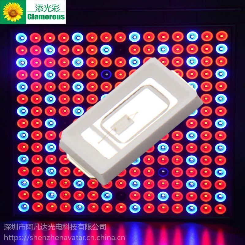 阿凡达光电 0.2W 5730紫光贴片灯珠 LED发光二极管 高亮0.2W紫光390-400
