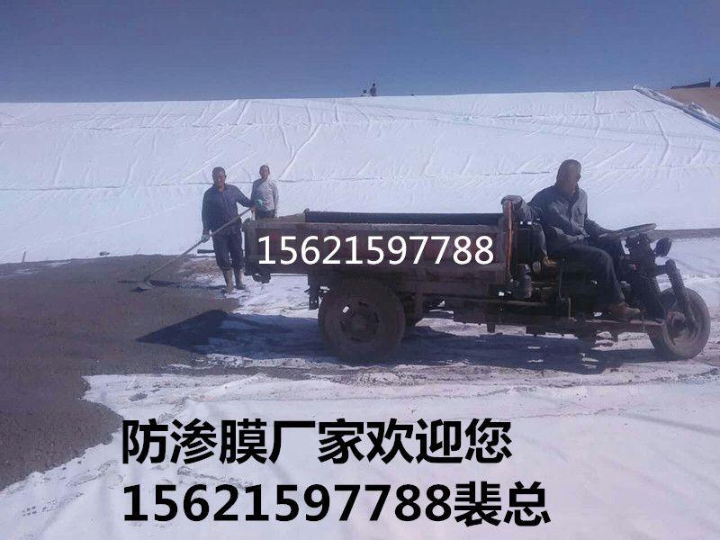 http://himg.china.cn/0/4_164_237342_800_600.jpg