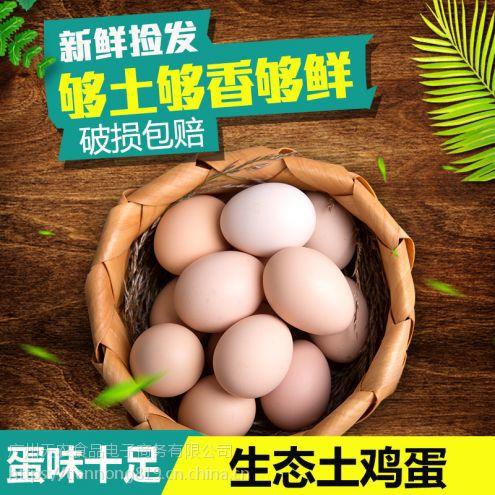 天农食品-清远麻鸡鸡肉的功效与作用|清远鸡独特养殖方式