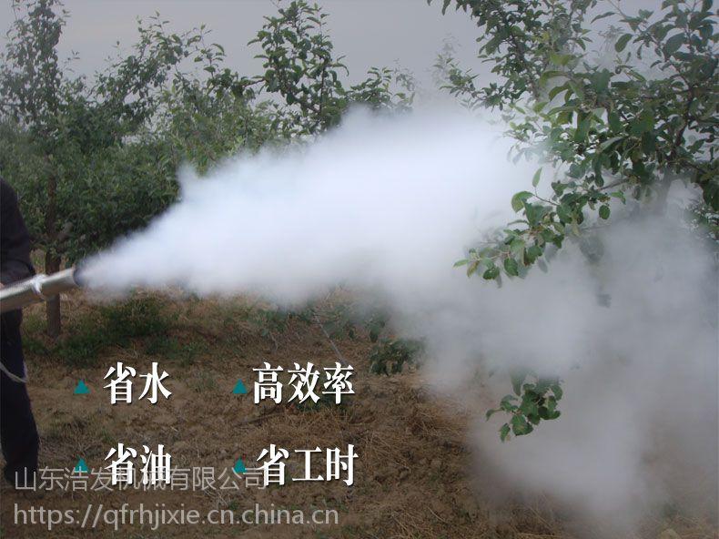 高压脉冲弥雾机 烟雾机端午节热卖