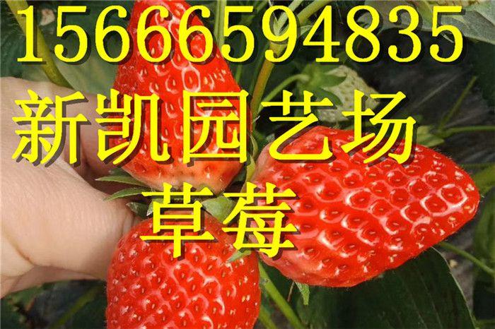 http://himg.china.cn/0/4_168_1003213_700_466.jpg