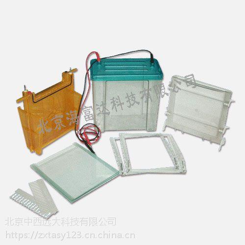 中西双垂直电泳仪(大号) 型号:BL61-DYCZ-24F库号:M406899