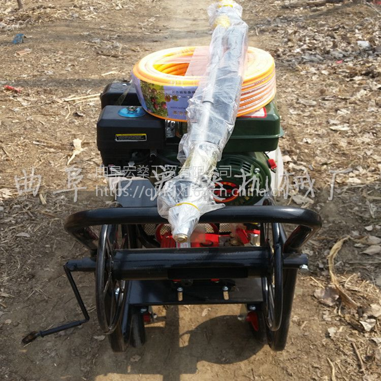 果园大棚推车式打药机 手推车自走式喷药机