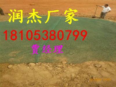 http://himg.china.cn/0/4_177_242504_400_300.jpg