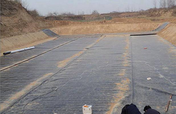 潮州防水膜 双毛面土工膜平米价格