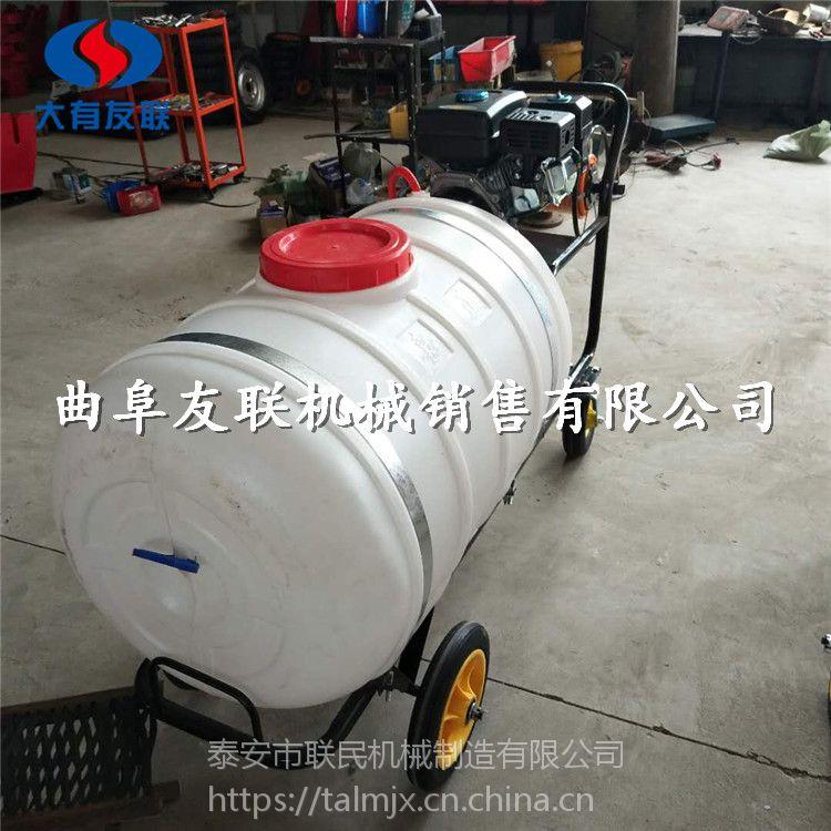 泰安联民供应 汽油手推式打药机 自走式小麦打药机 喷药机 质优价廉