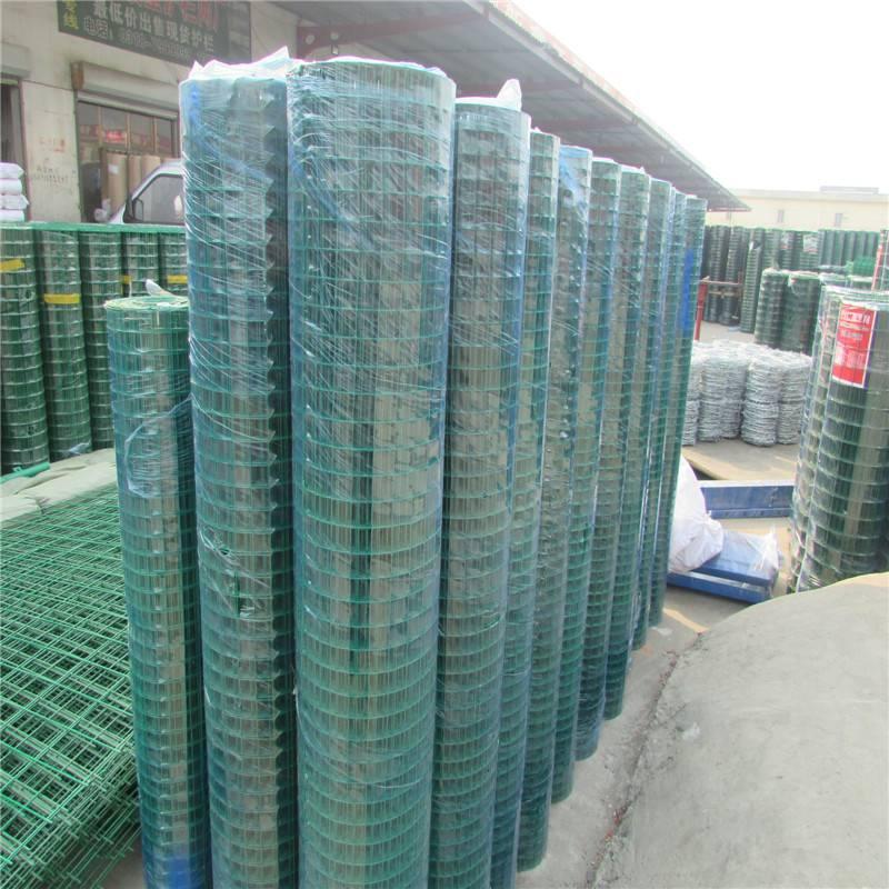 菜园铁丝围网 绿色围网 涂色荷兰网