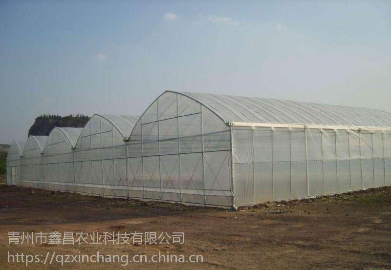 内蒙赤峰樱桃采摘大棚薄膜、连体圆拱骨架型建造公司