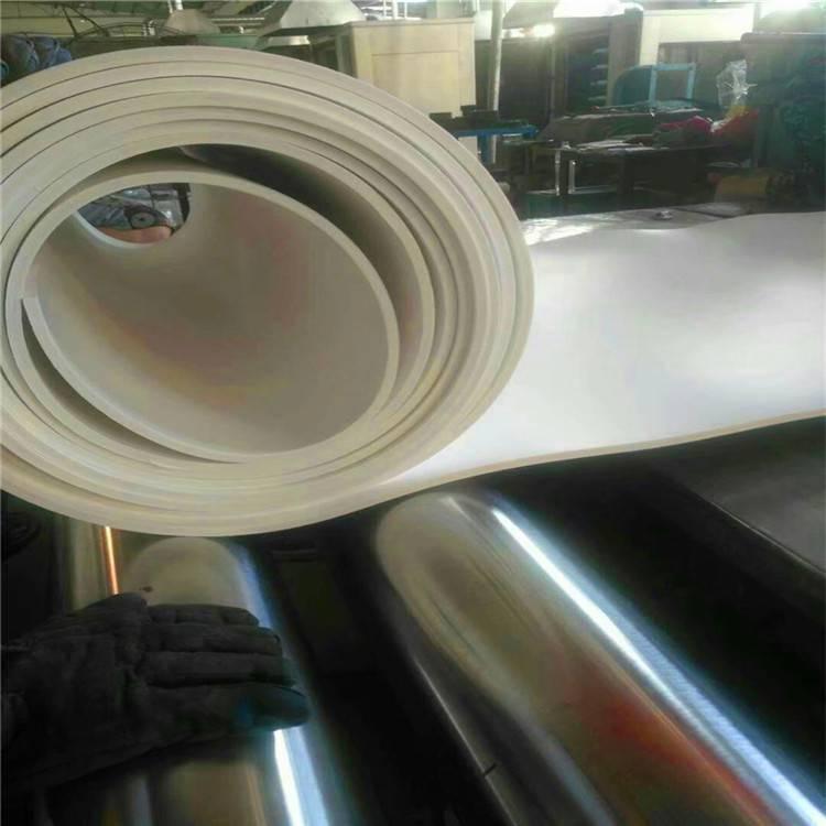 昌盛 供应各种规格聚四氟乙烯板 PTFE四氟板