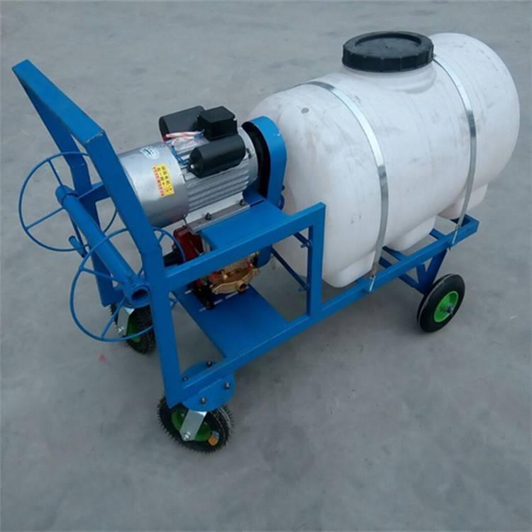 直销高压喷雾器 树林汽油喷雾器 圣鲁牌