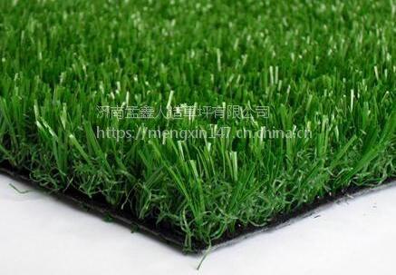 人造草坪 厂家优质出品规格齐全