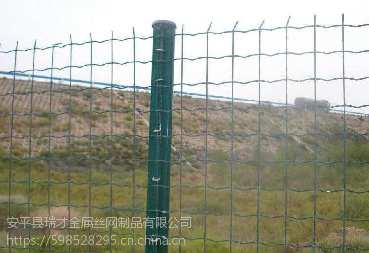 四川养殖鸡2.5mm围栏荷兰网的价格是多少