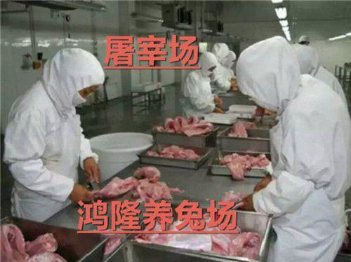 http://himg.china.cn/0/4_196_1020895_500_374.jpg