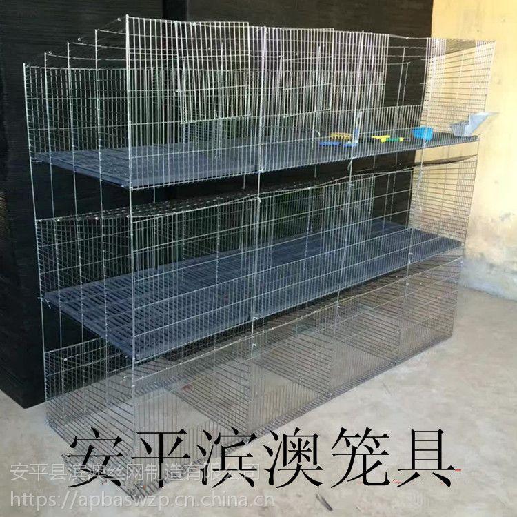 直供 3层12位商品兔笼 12位子母母仔兔子笼 兔笼 养殖三层兔子笼子 养殖网