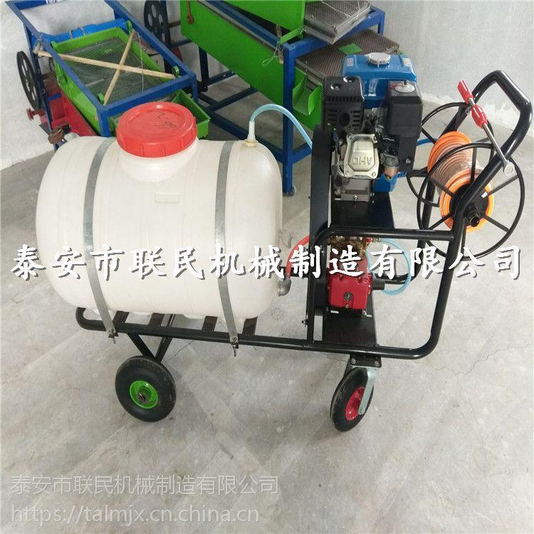 远射程喷雾器 拉管式喷药机 联民牌推式高压喷雾打药机 活动促销中