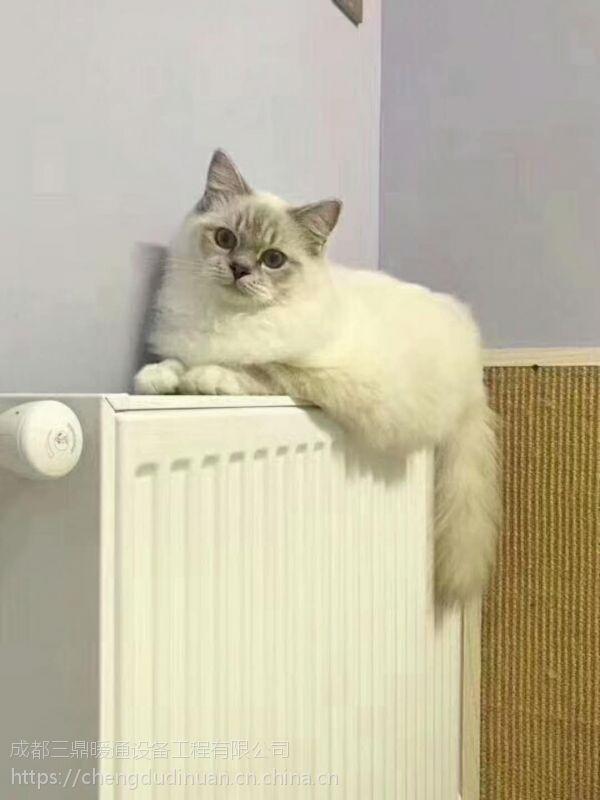 冬季采暖为什么都用暖气而不用空调?
