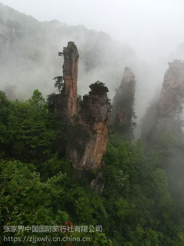 张家界是先去国家森林公园游玩还是去黄龙洞宝峰湖游玩比较好