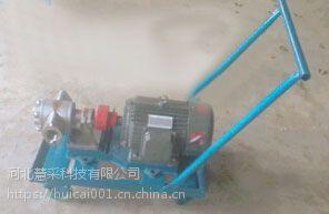 铁力不锈钢齿轮油泵 12v齿轮油泵特价批发