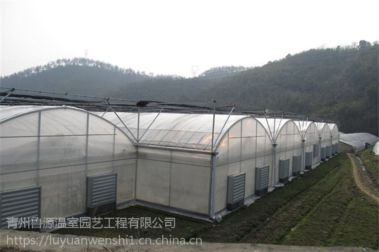 常德连栋薄膜温室大棚行业领先厂家