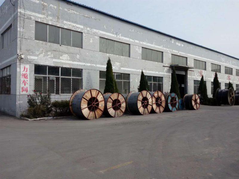 供应齐鲁牌裸铜线多芯交联塑料绝缘聚氯乙炔PVC护套光缆 YJV-D 1*2.5
