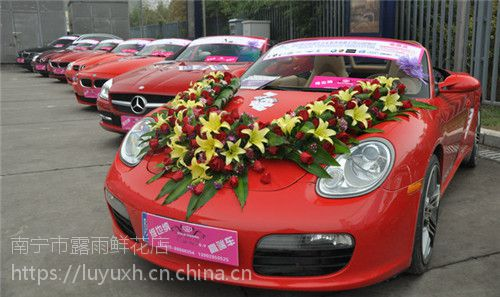 北海市鲜花批发北海市鲜切花15296564995北海市花卉 花艺用的鲜花材销售