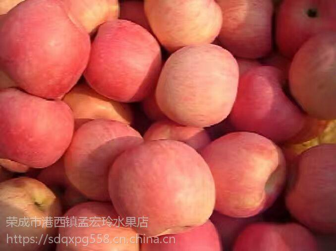 烟台栖霞苹果梨桃盛产基地