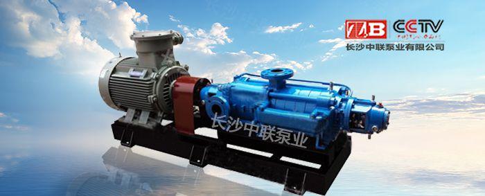 DY280-43(P)自平衡多级油泵
