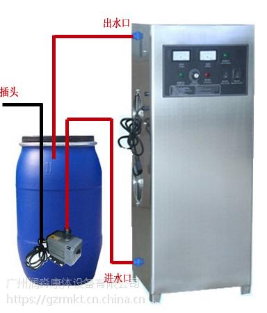 广州润淼高效杀菌消毒设备 一体化臭氧发生器厂家直销