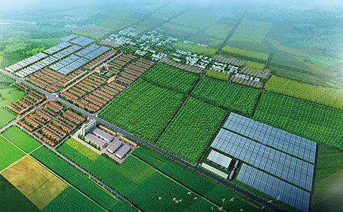 http://himg.china.cn/0/4_21_235106_484_300.jpg