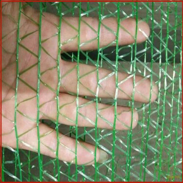陇南防尘网 工地上盖土网作用 哪里买绿色防尘网