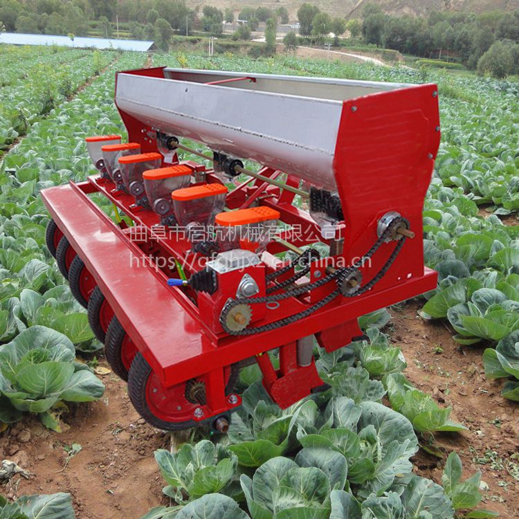 吉林萝卜播种机 免间苗桔梗播种机 启航牌拖拉机带水萝卜精播机