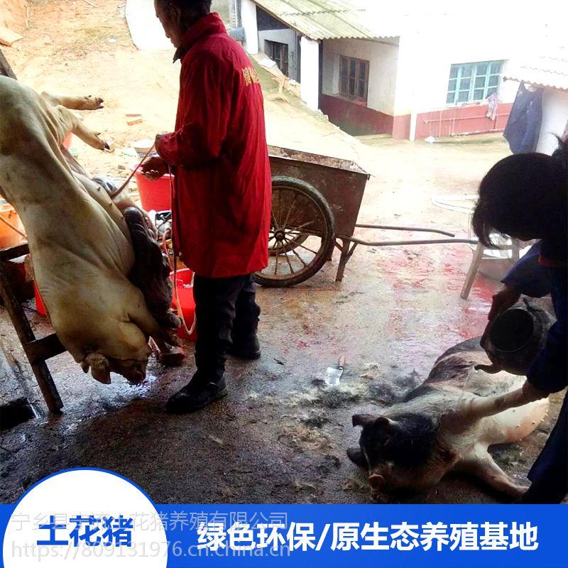 野生排骨 猪肉汤 孕妇坐月子汤汁 野生营养 绿色健康 宁乡土花猪