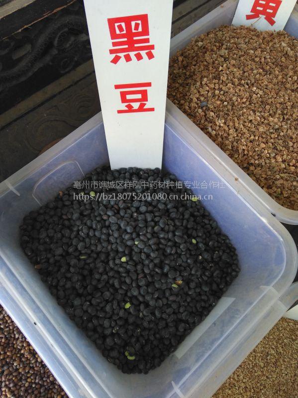 瓜蒌种子一亩地4公斤@@瓜蒌亩产效益
