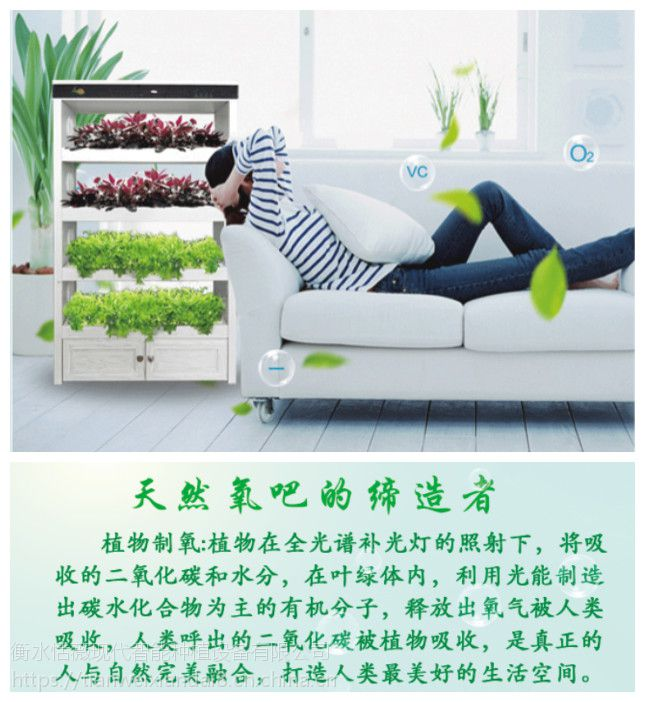 全智能生态菜养柜无土栽培设备阳台种植智能蔬菜种植