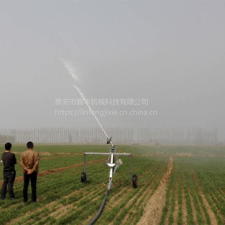 高压水枪灌溉霖丰75-300农业灌溉机械